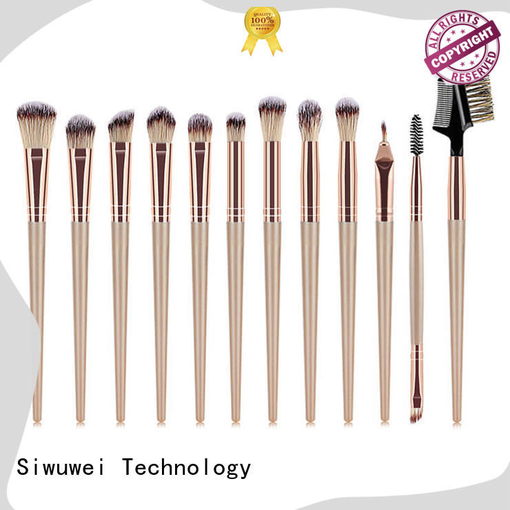 GLEAMUSE eyeshadow and brush set for business for Beauty shop