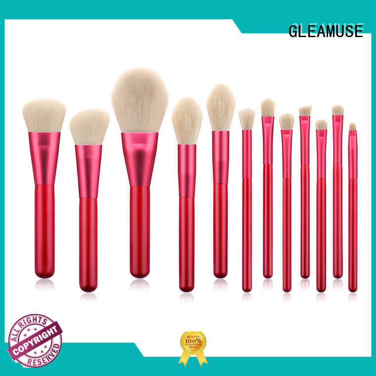GLEAMUSE beautiful brush sets for business used for face painting
