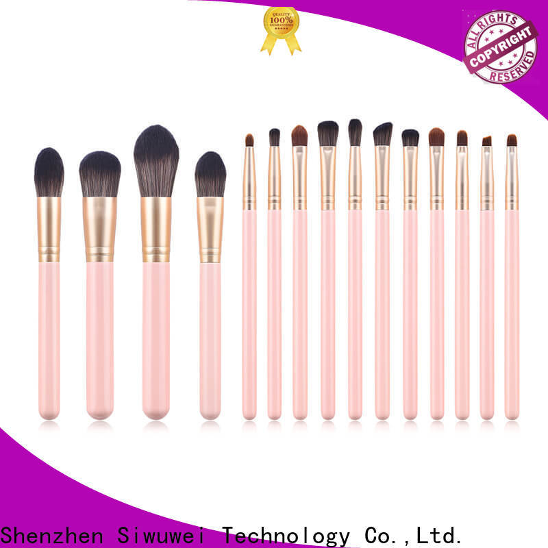 GLEAMUSE High-quality professional eyeshadow brush set factory for Beauty shop