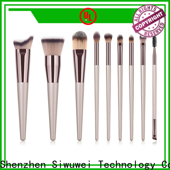 GLEAMUSE Custom makeup brushes and tools Suppliers used for face painting