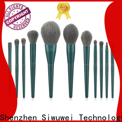 GLEAMUSE Wholesale oval makeup brush set uk Suppliers for women