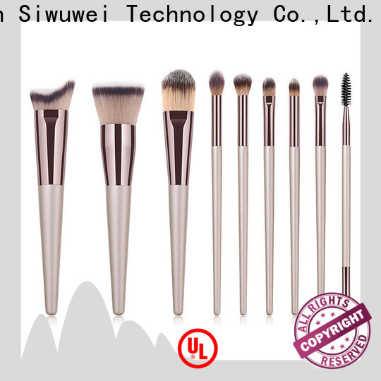 GLEAMUSE New best basic makeup brush set Suppliers for women