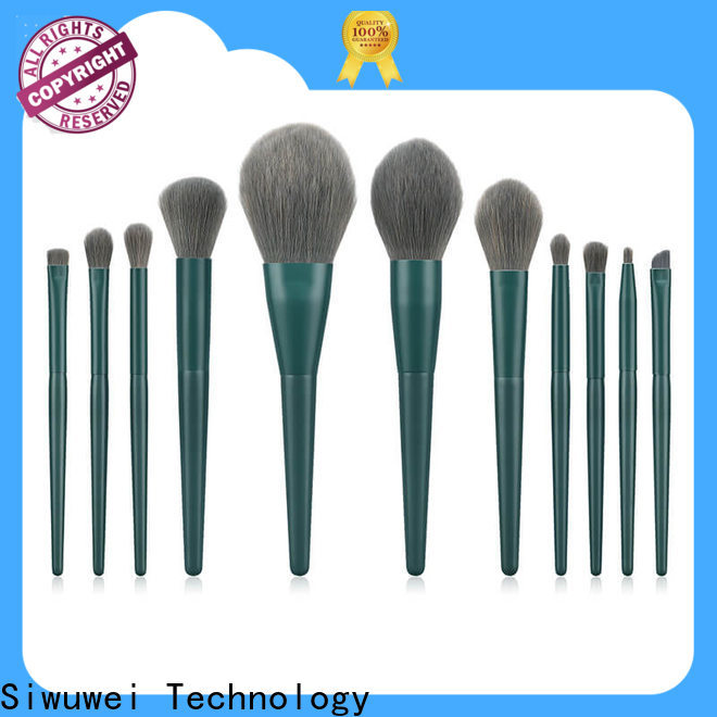 GLEAMUSE High-quality nice cheap makeup brushes Supply used for face painting