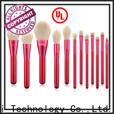 GLEAMUSE Custom cheap makeup brushes online company used for face painting