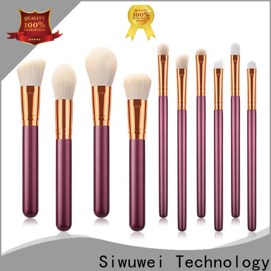 Best cheap professional makeup brushes set Supply for makeup artist