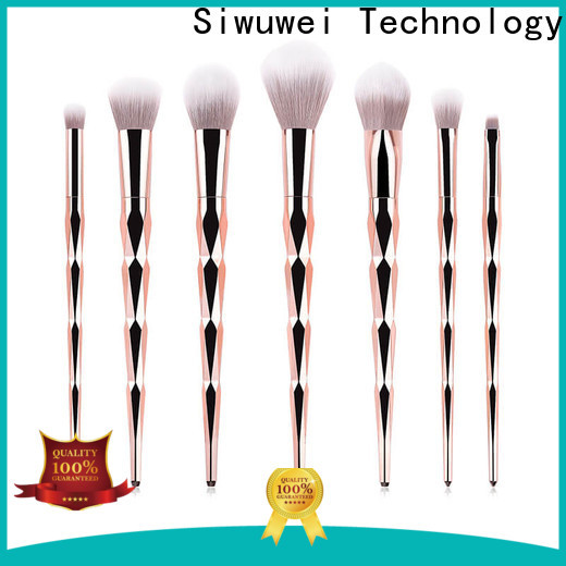 GLEAMUSE High-quality makeup brush deals Suppliers used for face painting