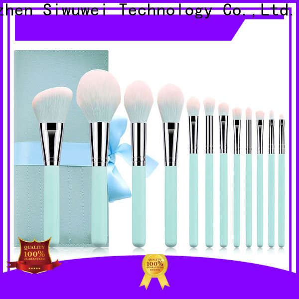 GLEAMUSE the makeup brush set Supply for Beauty shop