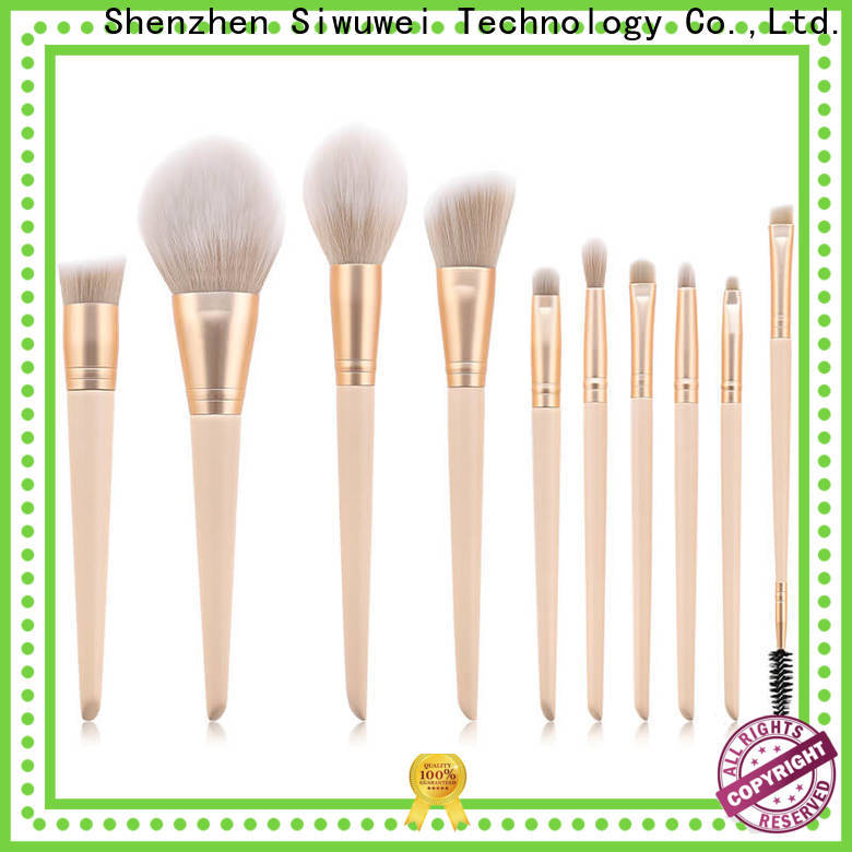 GLEAMUSE colorful makeup brush set for business for Beauty shop