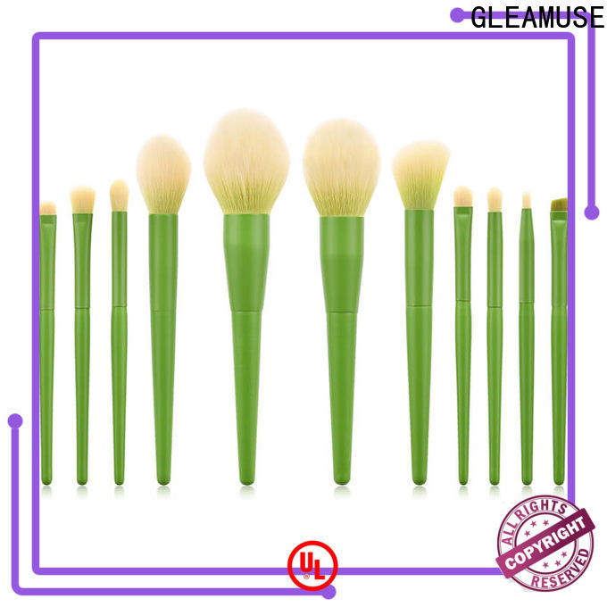 Wholesale giant makeup brush set for business used for face painting