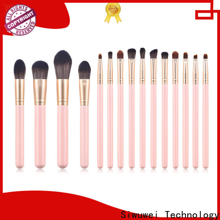 GLEAMUSE professional makeup brush collection company used for face painting