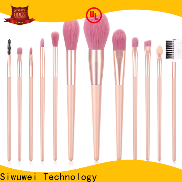 GLEAMUSE professional eyeshadow brush set factory used for face painting