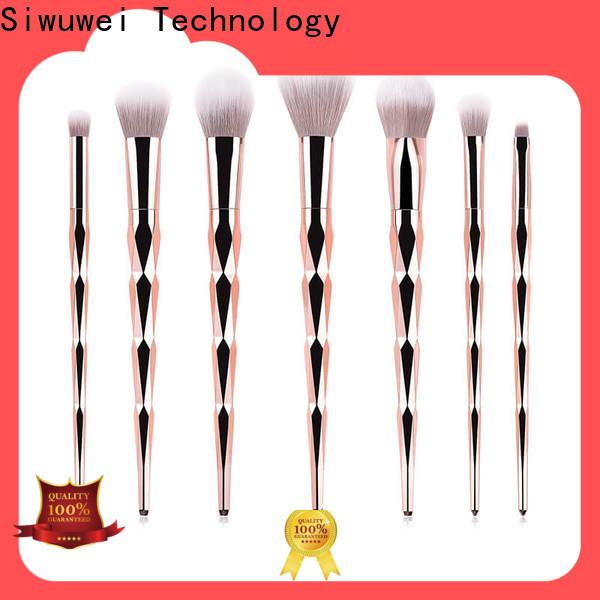 Wholesale women's makeup brush set Supply for women