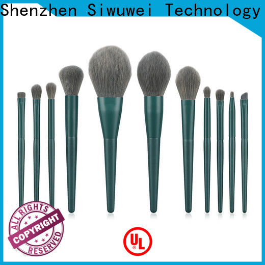 Best professional makeup brush collection Supply for women
