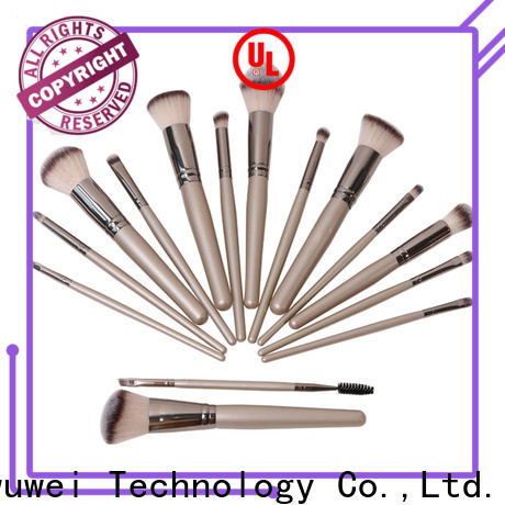 GLEAMUSE Best cheap face brush sets Supply used for face painting