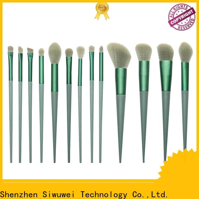 GLEAMUSE Wholesale complete brush set for business for women